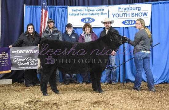Youth Steer- Backdrops